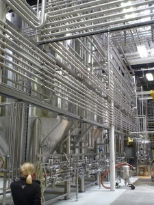 Stainless Maze